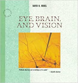 [Sign-up required] Eye, Brain, and Vision